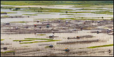 Lake Limboto-Sulawesi